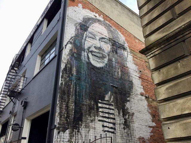 ダニーデンストリートアート 8 Vogle Streetの壁画