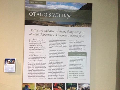 オタゴ博物館 オタゴについての説明