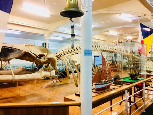 オタゴ博物館 海上展示物