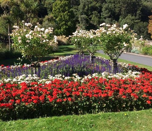 ダニーデン植物園