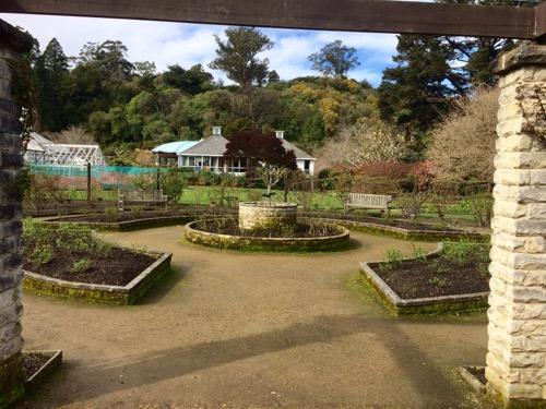 ダニーデン植物園 バラ園