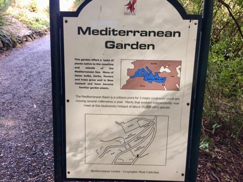 ダニーデン植物園 地中海のエリア看板