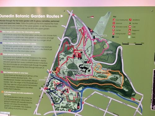 ダニーデン植物園 インフォメーションセンター中の地図