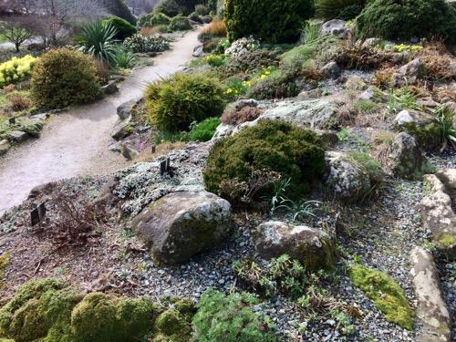 ダニーデン植物園 ロックガーデン3