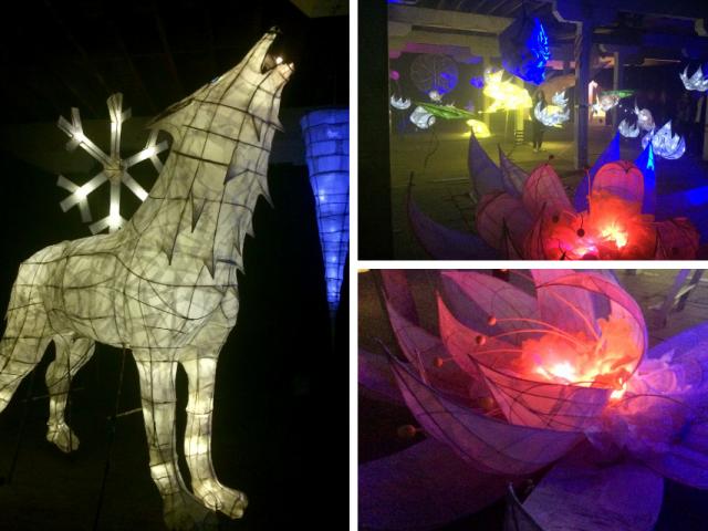 幻想的なランタンがたくさんのイベントSummer Lights