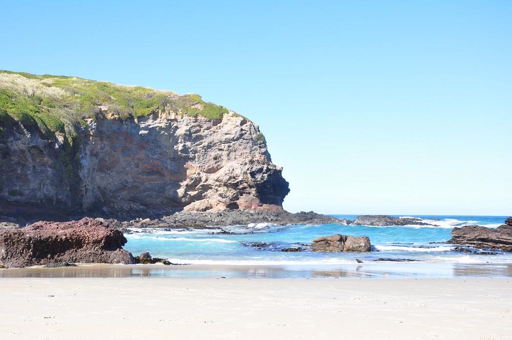 ニュージーランドダニーデン便り セントキルダビーチ