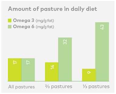 ニュージーランドのグラスフェッドバターのオメガ3と6脂肪酸のバランスはよい