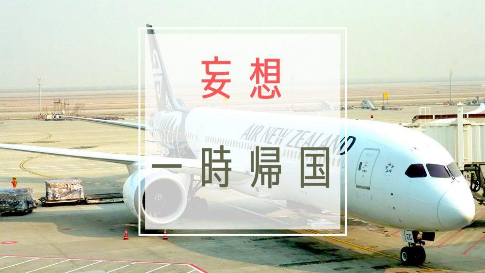 妄想旅行のすすめ!ブログで日本へ一時帰国 5つのやりたいことを満喫